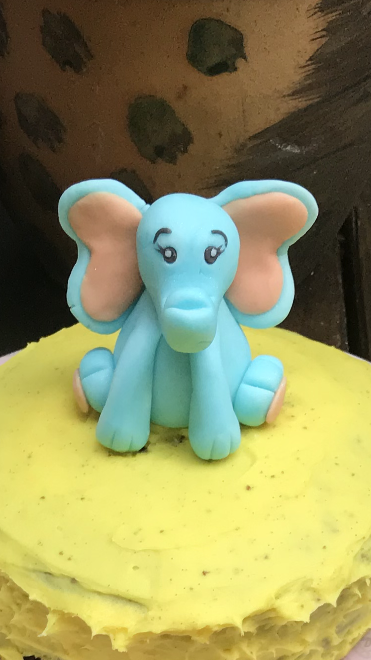 Elephant by Aneeka Casson