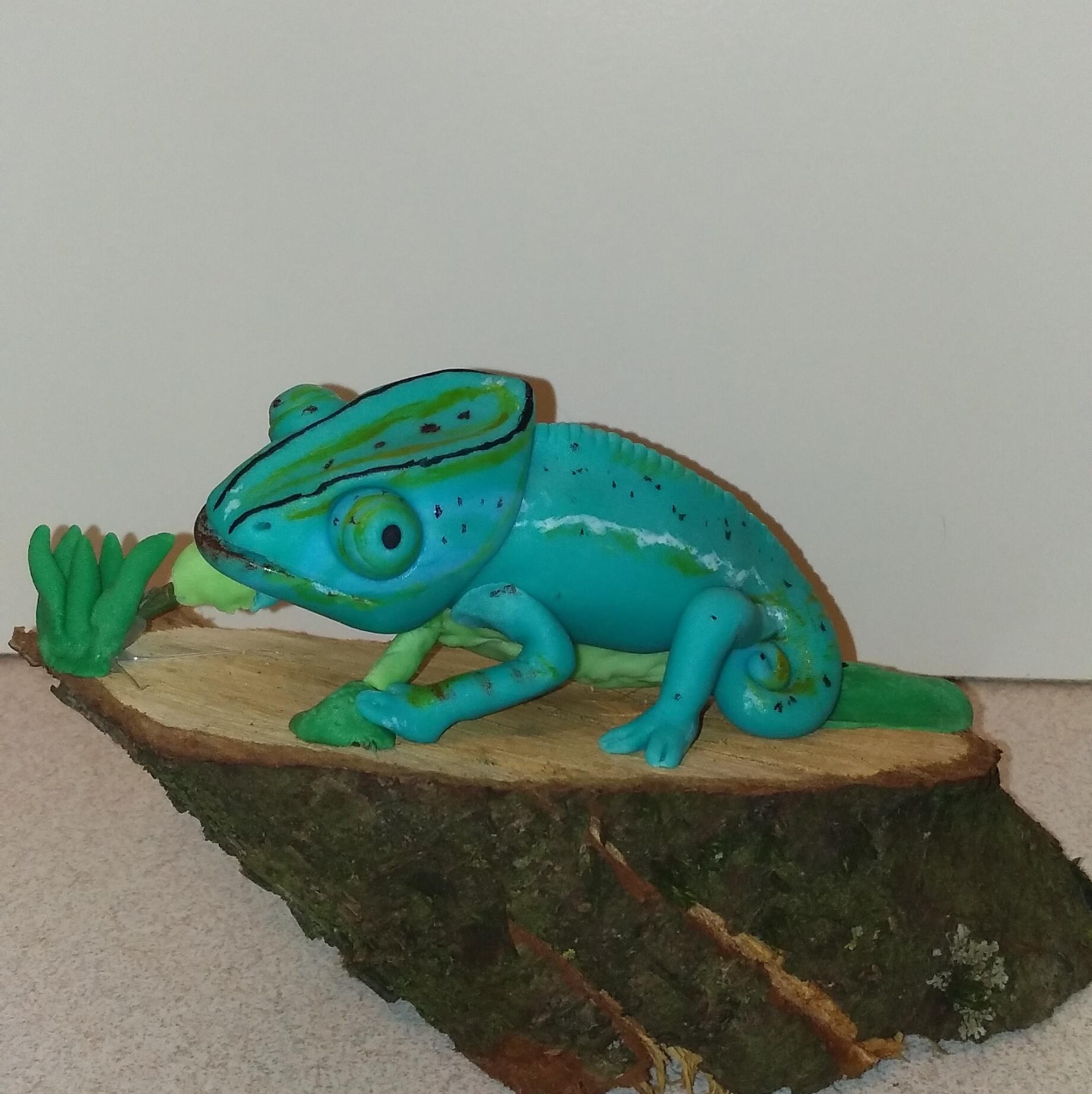 Chameleon by Elisabeth Petri