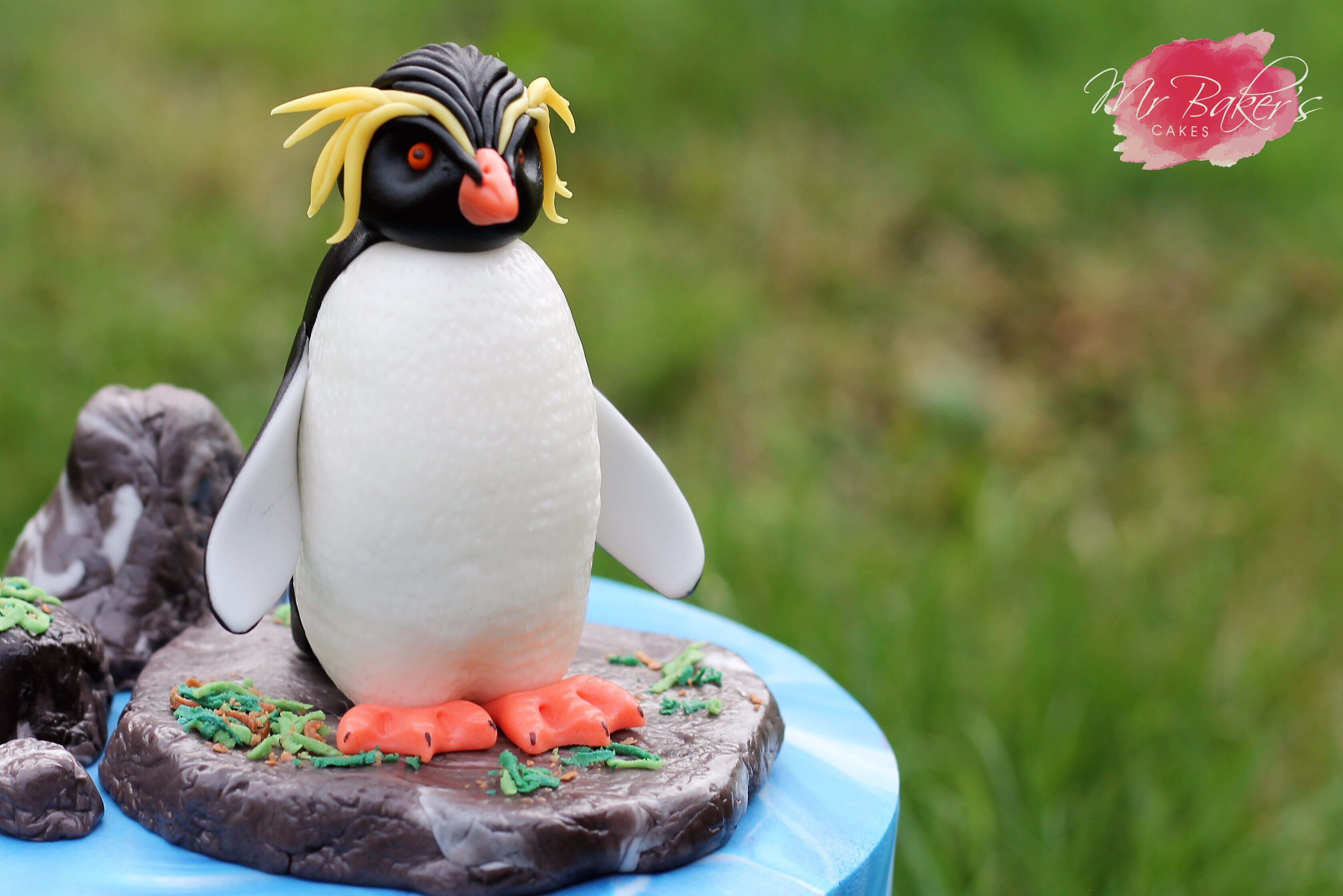 Rockhopper Penguin by Mr Baker Cakes